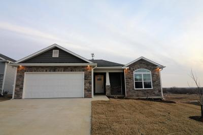 Columbia Single Family Home For Sale: 4219 W POSEY Ln
