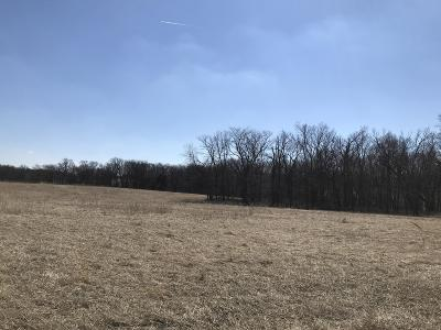 Columbia Residential Lots & Land For Sale: TRACT 11-B HWY 163