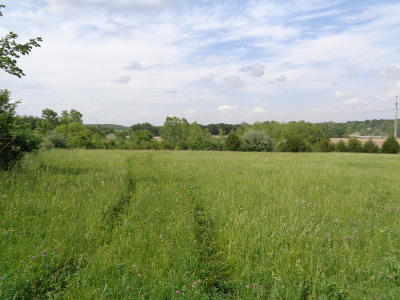Columbia Residential Lots & Land For Sale: N 36 ACRE TRACT N CREEK LAND