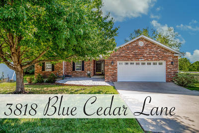 Columbia Single Family Home For Sale: 3818 BLUE CEDAR Ln
