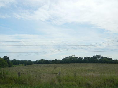 Columbia Residential Lots & Land For Sale: 18 AC W DRIPPING SPRINGS Rd