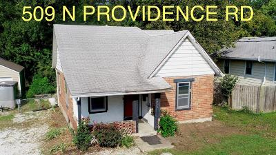 Columbia Single Family Home For Sale: 509 N PROVIDENCE Rd
