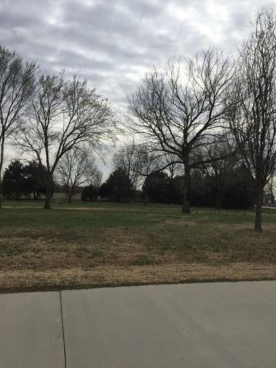 Nevada Residential Lots & Land For Sale: 15302 E Liberty Drive