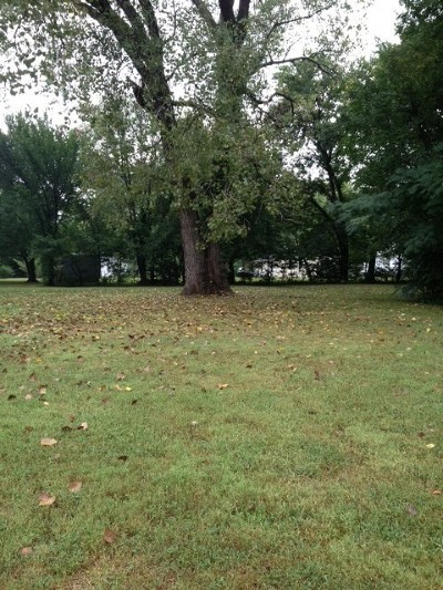 Nevada Residential Lots & Land For Sale: 413 W Austin