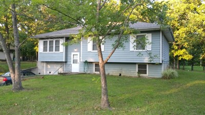 Cedar County Single Family Home For Sale: 1705 S 1st Street