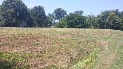 Vernon County Residential Lots & Land For Sale: 2xx W 5th
