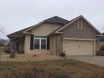 Vernon County Single Family Home For Sale: 410 S Prewitt