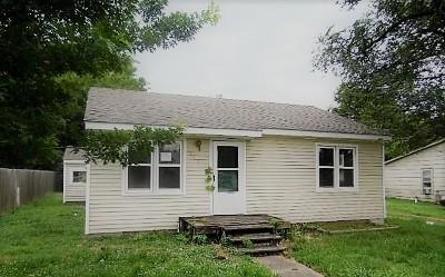 Nevada Single Family Home For Sale: 516 E Ashland