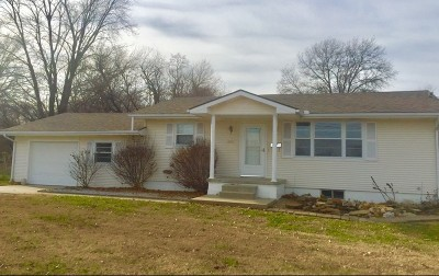 Nevada Single Family Home For Sale: 429 N College