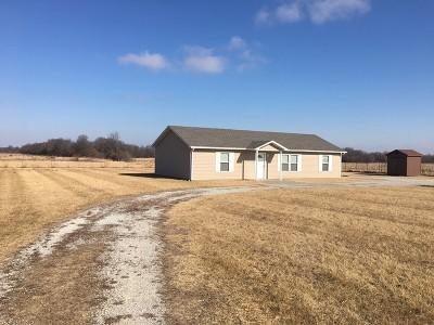 Nevada Single Family Home For Sale: 11221 E Rebel