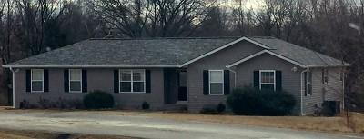 Nevada Single Family Home For Sale: 13692 E Mule Rd.