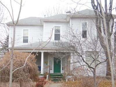 Nevada Single Family Home For Sale: 228 S Main