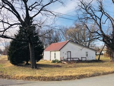 Nevada Single Family Home For Sale: 1401 N Cedar