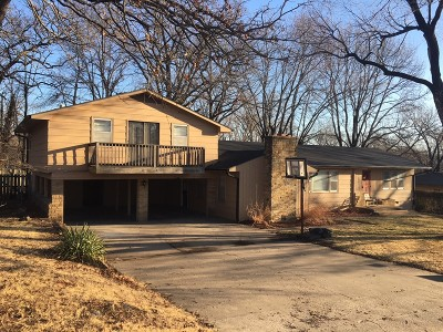 Nevada Single Family Home For Sale: 804 W Ewing