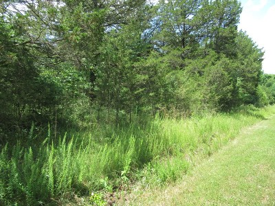 Greenfield Residential Lots & Land For Sale: Dade Cr 56