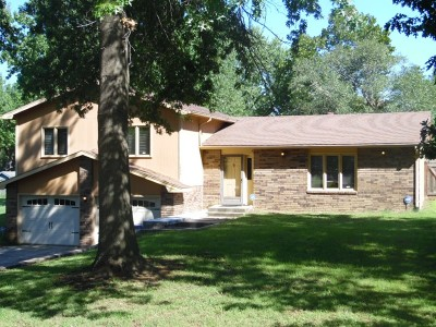 Nevada Single Family Home For Sale: 1534 W Cherry