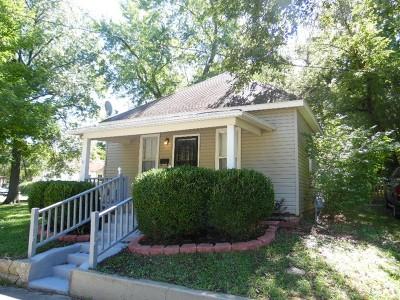 Nevada Single Family Home For Sale: 311 W Ashland