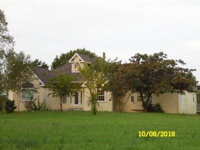 Nevada Single Family Home For Sale: 111 Crystal Lake Drive
