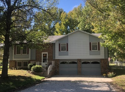Single Family Home For Sale: 1610 S Summer