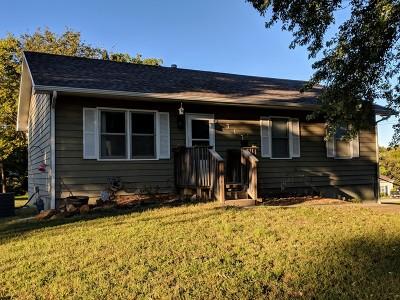 Nevada Single Family Home For Sale: 317 E Douglas