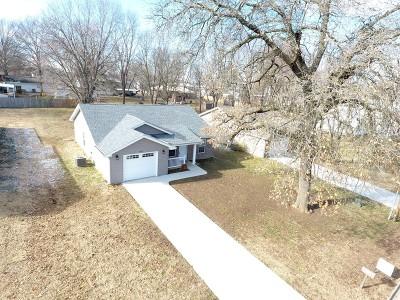 Nevada Single Family Home For Sale: 507 N Prewitt