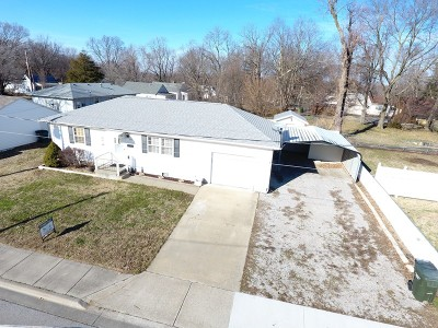 Nevada Single Family Home For Sale: 218 W Garfield