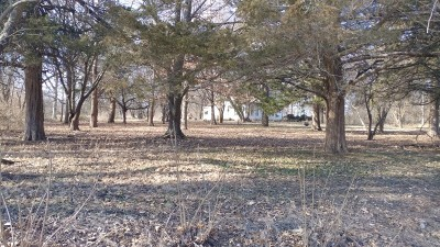Schell City MO Single Family Home For Sale: $55,000