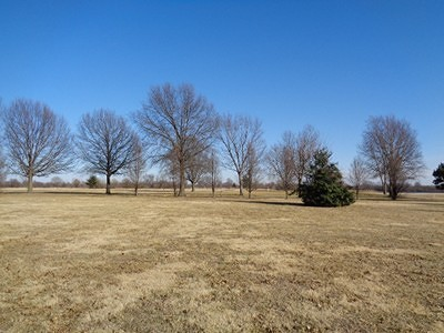 Vernon County Residential Lots & Land For Sale: 1715 Rd