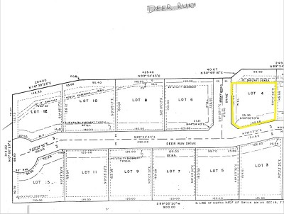 Nevada Residential Lots & Land For Sale: Lot 4 Deer Run