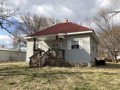 Nevada Single Family Home For Sale: 1009 E Locust