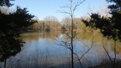 Cedar County Residential Lots & Land For Sale: Xxx 1975 Rd