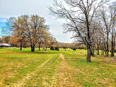 St. Clair County Residential Lots & Land For Sale: 2405 SE 1130 Rd