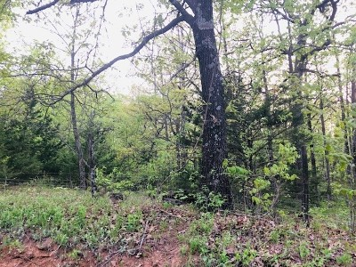 Vernon County Residential Lots & Land For Sale: 21134 Tract 4 E 1400 Rd