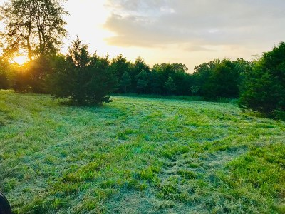 Cedar County Residential Lots & Land For Sale: 16025 S 325 Rd
