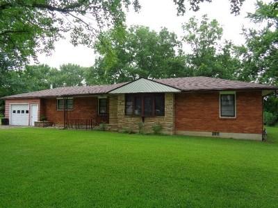Nevada Single Family Home For Sale: 107 E Edwards Place