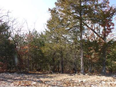 Stone County, Taney County Residential Lots & Land For Sale: Lot 321 Sharay