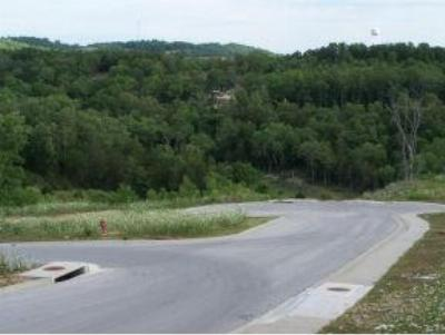 Stone County, Taney County Residential Lots & Land For Sale: Sapling Drive
