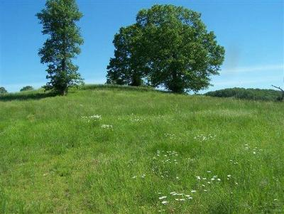 Saddlebrooke Residential Lots & Land For Sale: Tbd State Hwy Bb