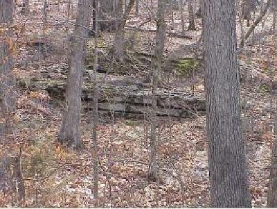Branson Residential Lots & Land For Sale: 123 Canyon Creek