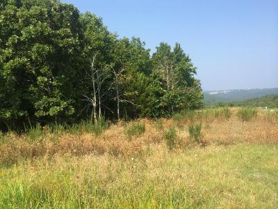 Branson Creek, Branson Creek/Fieldstone, Branson Creek/Fieldstone Bluffs, Branson Creek/Iron Ridge, Branson Creek/Oak Knoll Residential Lots & Land For Sale: 261 Golf Club Drive