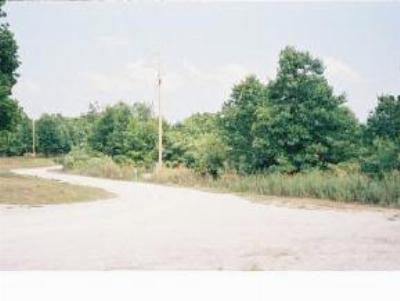 Blue Eye Residential Lots & Land For Sale: Lot 3 Clearview Drive