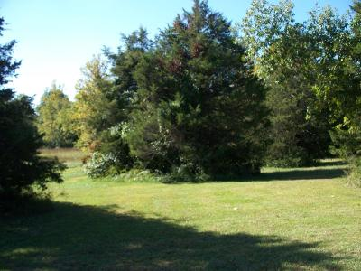Saddlebrooke Residential Lots & Land For Sale: Lot 116 Seven Pines Drive