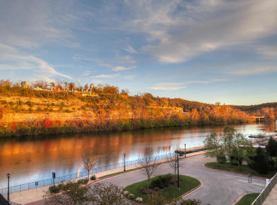 Barry County, Stone County, Taney County Condo/Townhouse For Sale: 10207 Branson Landing #207