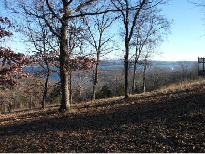 Reeds Spring Residential Lots & Land For Sale: Tbd Dd Highway