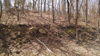 Ridgedale Residential Lots & Land For Sale: Tba Shore Drive