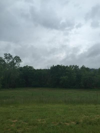 Saddlebrooke Residential Lots & Land For Sale: Lot 121 Seven Pines Drive