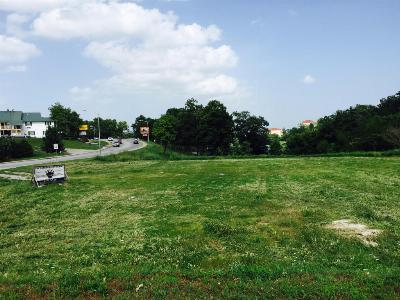 Branson, Branson West Residential Lots & Land For Sale: 2868 Green Mountain Drive