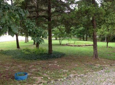 Kimberling City MO Residential Lots & Land For Sale: $100,000