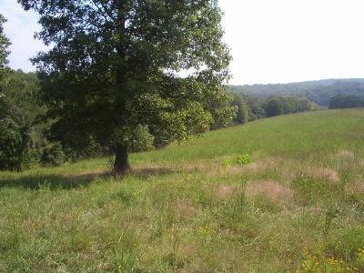 Highlandville Residential Lots & Land For Sale: Tbd Flea Market Road