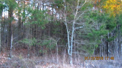 Stone County, Taney County Residential Lots & Land For Sale: Lot 185 Roadrunner Lane